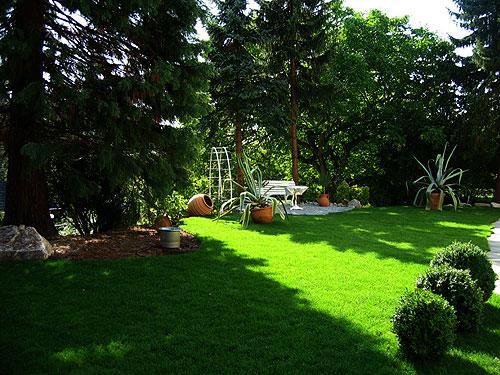 Traumgarten Dillmann Gartengestaltung Ilsfeld